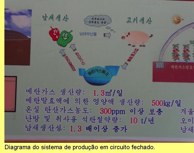 Economia circular.